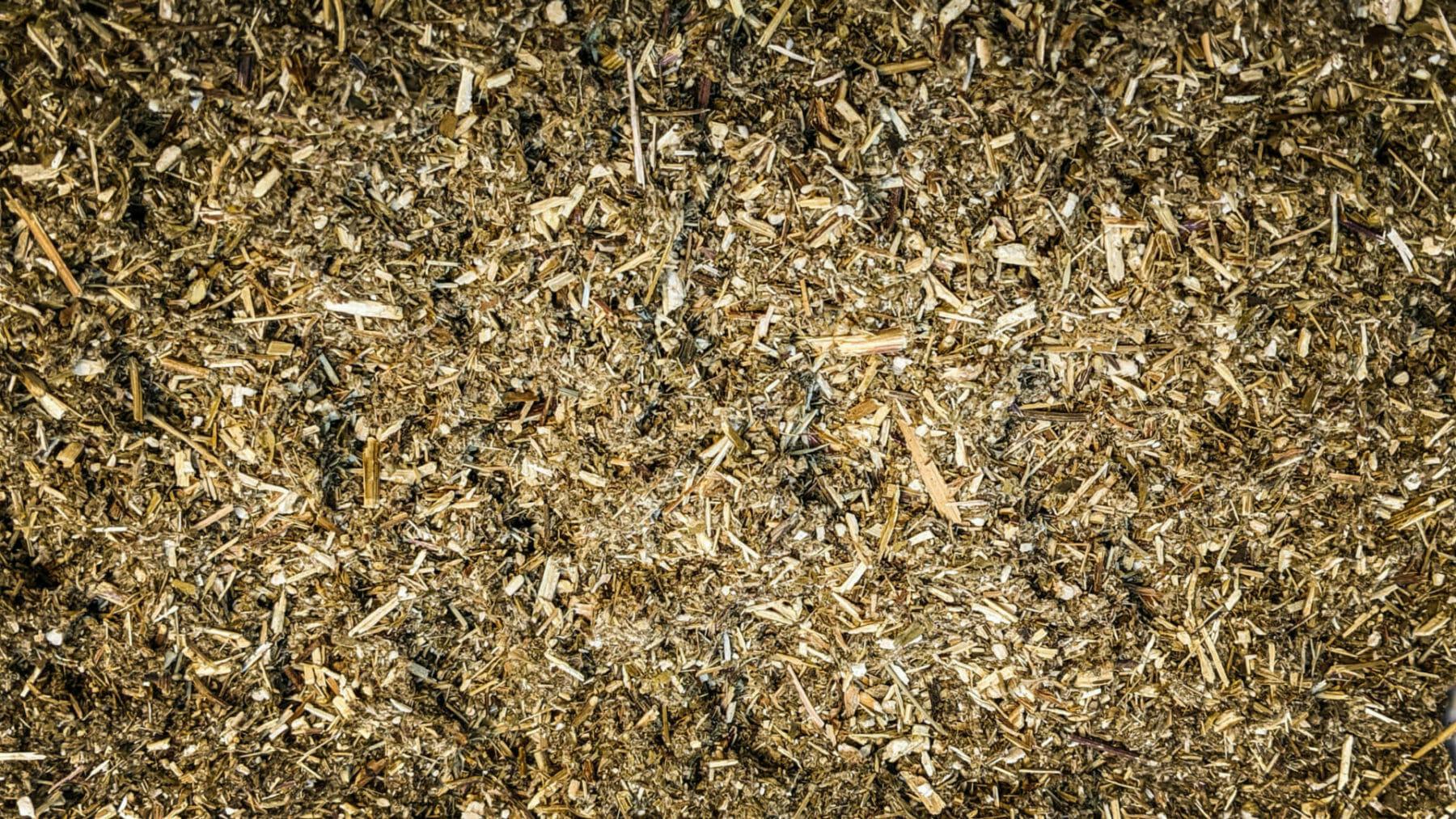 Mugwort Product image