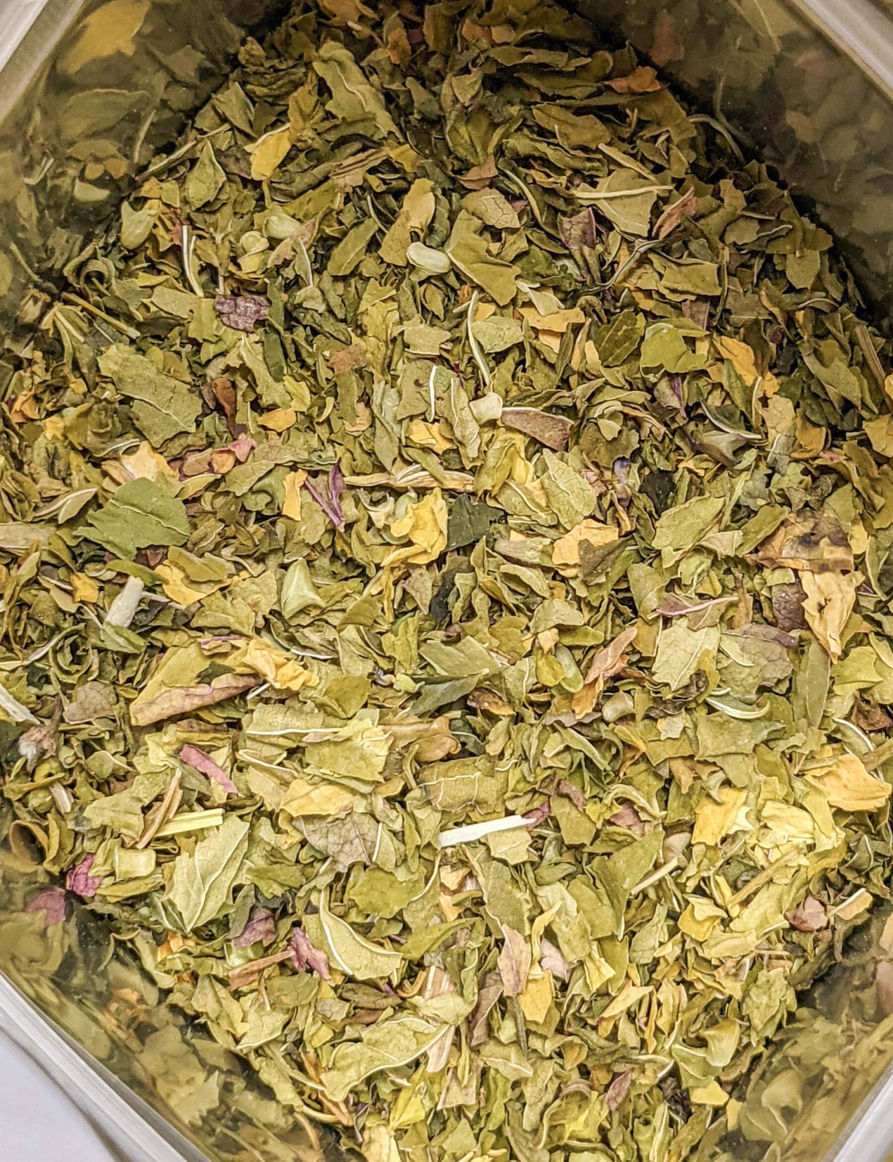 organic scullcap herb